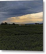 Storm Over The Yakima Valley Metal Print by Mike  Dawson