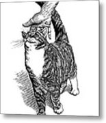 Stroking A Cat's Head, Artwork Metal Print by Science Photo Library