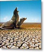 Suffering Seals Metal Print by Carlos Caetano
