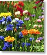 Summer Flowers Metal Print by Elena Elisseeva