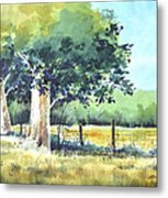 Summer Trees Metal Print by Rick Mock