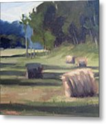 Summer's Shade Metal Print by Erin Rickelton