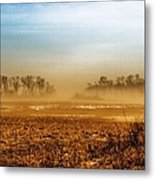 Sunday Afternoon Metal Print by Tom Druin