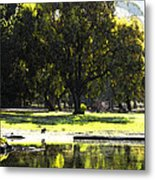 Sunday In The Park Metal Print by Anne Mott