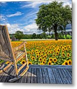 Sunflower Farm Metal Print by Debra and Dave Vanderlaan