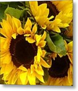 Sunflowers Metal Print by Amy Vangsgard