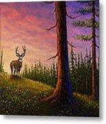 Sunrise Buck Metal Print by C Steele