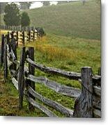Sunrise Meadow - Blue Ridge Parkway I Metal Print by Dan Carmichael