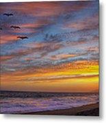 Sunset Flight Metal Print by Robert Jensen