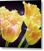 Sunshine Tulips Metal Print by Debra  Miller