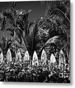 Surf Board Fence Maui Hawaii Black And White Metal Print by Edward Fielding