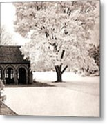 Surreal Dreamy Ethereal Winter White Sepia Infrared Nature Tree Landscape Metal Print by Kathy Fornal