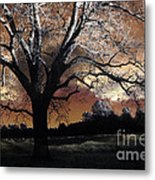 Surreal Fantasy Gothic Trees Nature Sunset Metal Print by Kathy Fornal