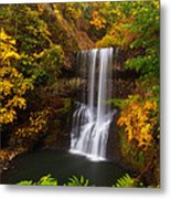 Surrounded By Fall Metal Print by Darren  White