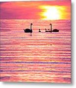 Swans On The Lake Metal Print by Jon Neidert