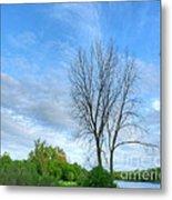Swirly Sky And Tree Metal Print by Deborah Smolinske