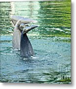 Tails Metal Print by Cheryl Young