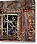 Tangled Up In Time Metal Print by Lois Bryan