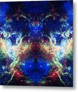 Tarantula Reflection 1 Metal Print by The  Vault - Jennifer Rondinelli Reilly