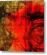 The Allure Of A Rose Metal Print by Brett Pfister