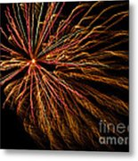 The Anticipated Burst Metal Print by Nick  Boren