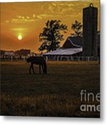 The Beauty Of A Rural Sunset Metal Print by Mary Carol Story