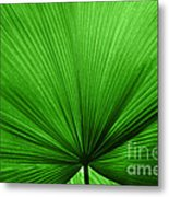 The Big Green Leaf Metal Print by Natalie Kinnear