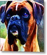 The Boxer - Painterly Metal Print by Wingsdomain Art and Photography