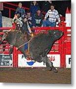 The Bull Rider Metal Print by Larry Van Valkenburgh