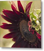 The Child Of Nature Metal Print by Sharon Mau