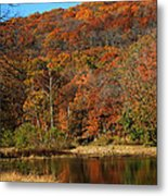 The Color Of Fall Metal Print by Billy Beasley