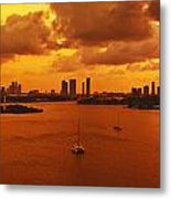 The Color Of Passion Metal Print by Michael Guirguis