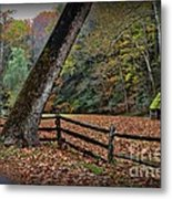 The Country Road Metal Print by Paul Ward