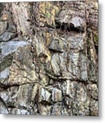 The Face In The Rock Metal Print by JC Findley