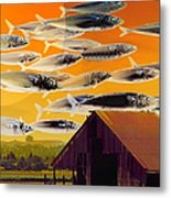 The Fish Farm 5d24404 Long Metal Print by Wingsdomain Art and Photography