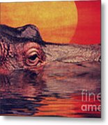 The Hippo Metal Print by Angela Doelling AD DESIGN Photo and PhotoArt