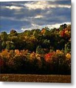 The Layers Of Autumn Metal Print by Julie Dant