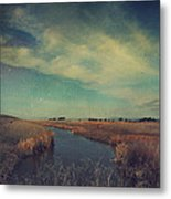 The Love We Give Metal Print by Laurie Search