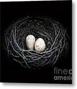 The Nest Metal Print by Edward Fielding