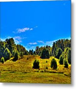 The Old Maple Ridge Ski Area - Old Forge Ny Metal Print by David Patterson