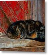 The Old Mill Cat Metal Print by Julie Dant