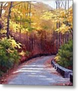 The Old Roadway In Autumn II Metal Print by Janet King