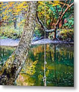 The Old Swimming Hole Metal Print by Edward Fielding