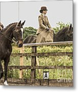 The Other Side Of The Saddle Metal Print by Linsey Williams