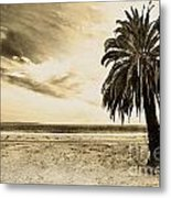 The Palm Swayed As The Storm On The Ocean Blew In Metal Print by Artist and Photographer Laura Wrede