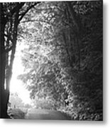 The Path Ahead Metal Print by Andrew Soundarajan