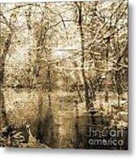 The Pond Metal Print by Yanni Theodorou