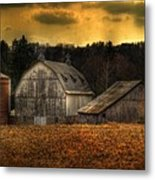 The Rose Farm Metal Print by Thomas Young