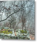 The Sacrificial Altar Of Prometheus Metal Print by William Fields