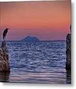 The Sentinels  Metal Print by Peter Tellone